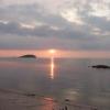 Ahok: Dolphin Island Itu Menjual Belitung
