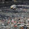 Basuki: Sampah Urusan Dinas Kebersihan, Bukan PU!
