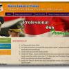 Web Informasi Kartu Jakarta Pintar
