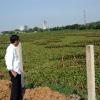 Jokowi Ingin Wujudkan Impian Bung Karno di Waduk Ria Rio