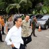 Ahok akan Dampingi Jokowi Terima Kapal Pengangkut Sapi di Tanjung Priok